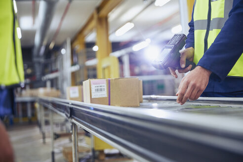 Worker scanning and processing boxes on conveyor belt in distribution warehouse - HOXF02474
