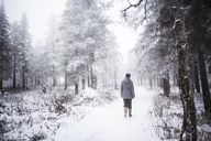 Rear view of woman walking in snow covered forest - CAVF00587