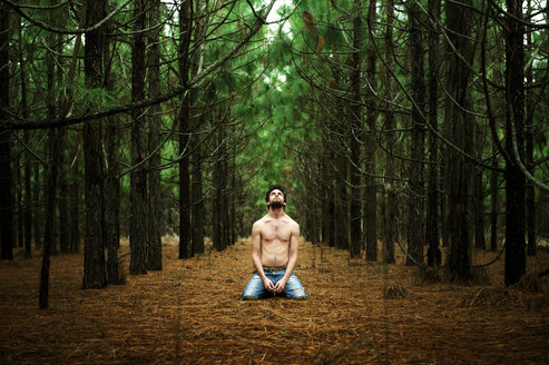 Man looking up while sitting amidst trees in forest - CAVF00812