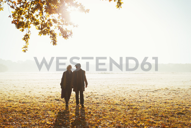 Silhouette senior couple holding hands walking in sunny autumn park - CAIF05323 - Robert Daly/Westend61