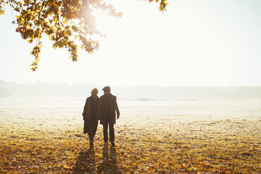 Silhouette senior couple holding hands walking in sunny autumn park - CAIF05323