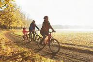 Playful young family bike riding on path in sunny autumn park - CAIF05326