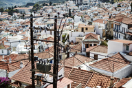 Red tiled rooftops, Skopelos, Greece - CAIF05923