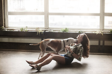 Playful woman dog at home - CAVF01168