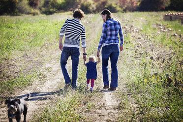 Rear view of family walking on grassy field - CAVF01279