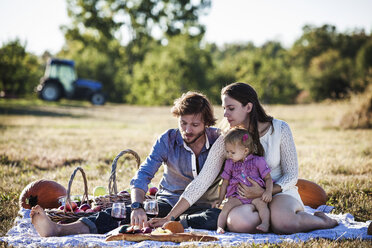 Family eating fruits at picnic on sunny day - CAVF01288