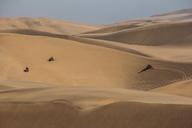 Friends riding quadbikes in desert, Swakopmund, Namibia - CAIF07615