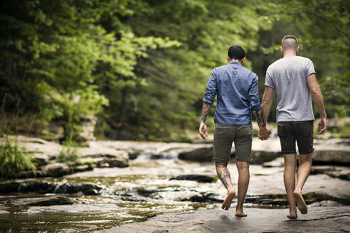 Rear view of homosexual couple holding hands while walking in forest - CAVF01653