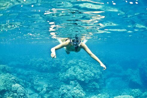 Woman snorkeling undersea - CAVF01932