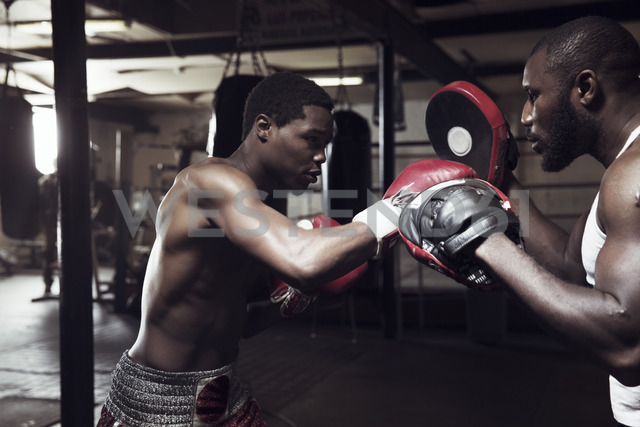 Man practicing boxing with trainer in gym - CAVF03502