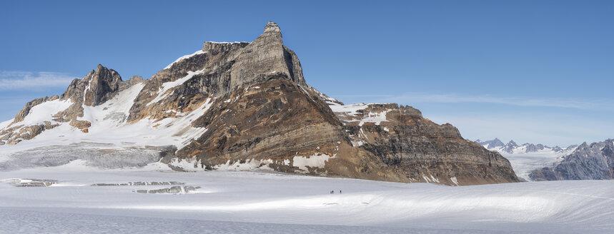 Greenland, Sermersooq, Kulusuk, Schweizerland Alps, group of people walking in snow - ALRF00982