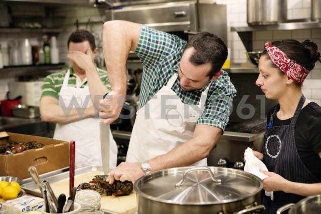 Man cutting lobster while standing by chef at commercial kitchen - CAVF04513