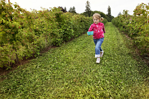 Girl holding fruit basket running on field in farm - CAVF04819
