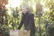 Portrait smiling male farmer harvesting apples in food processing plant - CAIF09967