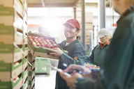 Smiling male worker carrying box of apples in food processing plant - CAIF09982