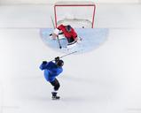 Hockey player scoring a goal - CAIF11160