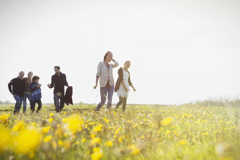 Multi-generation family walking in sunny meadow with wildflowers - CAIF11499