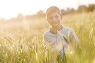 Portrait smiling boy in sunny rural wheat field - CAIF13049