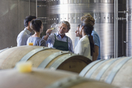 Vintner and winery employees examining wine in cellar - CAIF13655