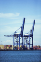 Cranes and cargo containers at waterfront - CAIF15095