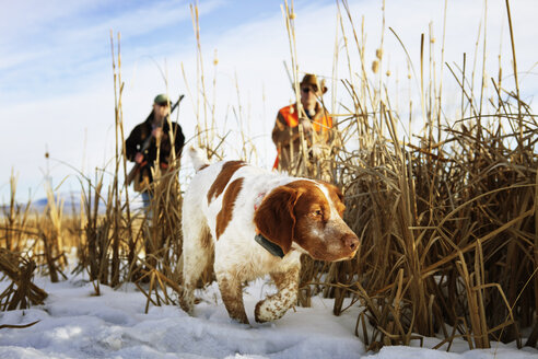 Couple holding rifle while walking with dog on snow covered field - CAVF06396
