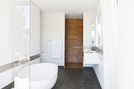Modern bathroom interior with large bathtub and wooden door - CAIF15510