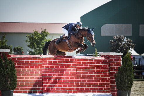 Man riding horse over wall at show - CAVF07068