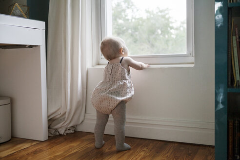 Rear view of baby girl looking through window - CAVF07543