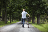 Rear view of man walking on road with bicycle in forest - CAVF07672