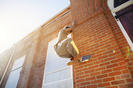 Low angle view of man climbing brick wall - CAVF07753