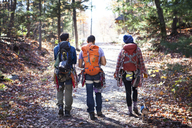 Rear view of friends walking on road amidst trees in forest - CAVF07825