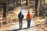 Rear view of male friends with backpacks walking on road in forest - CAVF07855
