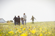 Multi-generation family walking in sunny meadow with wildflowers - CAIF15882
