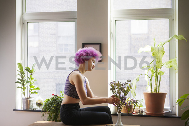Side view of woman keeping plant in vase at home - CAVF08053