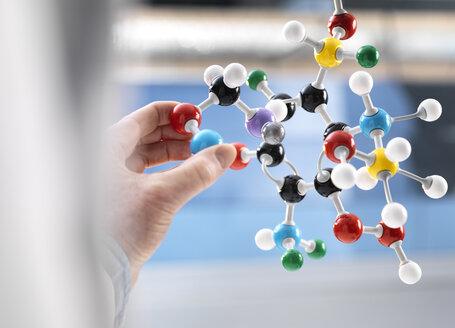 Scientist holding a molecular model - ABRF00123