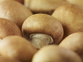 Extreme close up of whole chestnut mushrooms - CAIF17078
