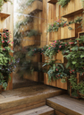 Plants growing in wooden boxes - CAIF17099