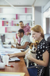 Dog sitting on woman's lap in office - CAIF17328