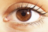 Extreme close up of brown eyes - CAIF17702