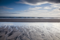 Beach at low tide - CAIF18077