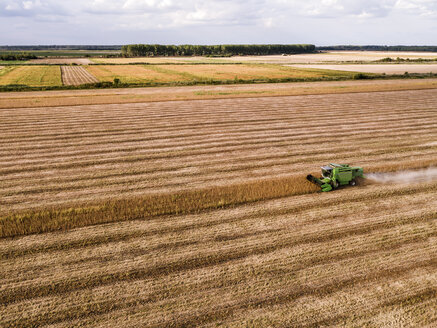 Serbia, Vojvodina, Combine harvester on a wheat, aerial view - NOF00022
