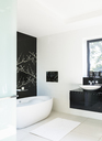 Wall art and soaking tub in modern bathroom - CAIF18945