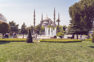 Turkey, Istanbul, View of Sultan Ahmed Mosque - TAMF00978