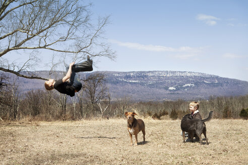 Boy backflipping by brother and dogs on field - CAVF09639
