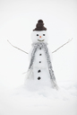 Snowman wearing knit hat and scarf - CAIF19701