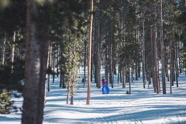 Mid distance view of girl holding plastic sledge while standing on snowy field amidst trees - CAVF10509