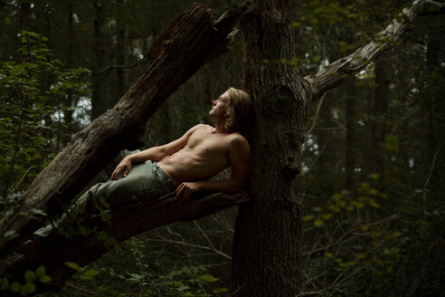 Man relaxing on branch in forest - CAVF10675