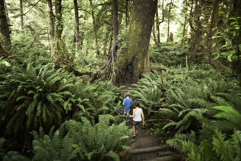 Rear view of children walking in forest - CAVF11764