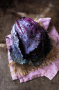 Close-up of wet red cabbage on napkin at kitchen counter - CAVF12111
