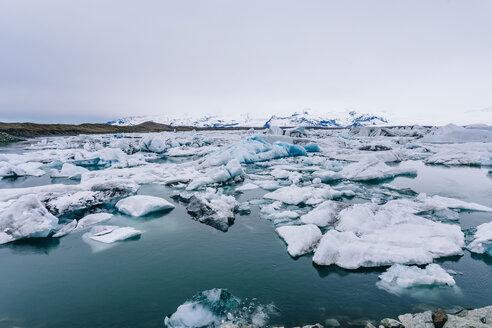 Iceberg floating on Jokulsarlon lagoon - CAVF12384